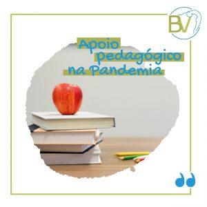 apoio pedagogico na pandemia